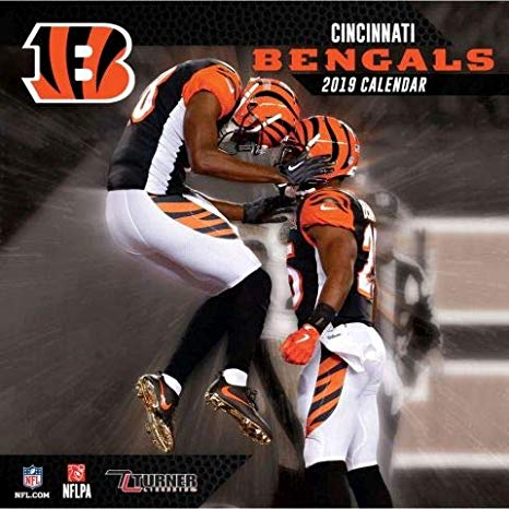 Cincinnati Bengals vs. Arizona Cardinals at Paul Brown Stadium